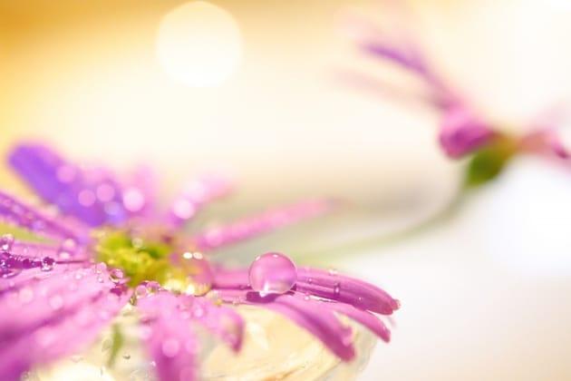 思わずプレゼントしたくなる!香りとデザインを楽しむガラス製お香立て
