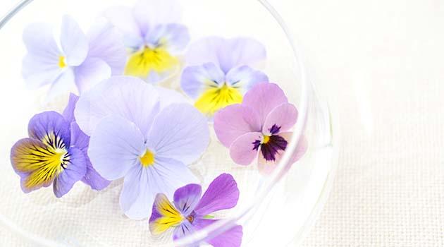 短くなってきたお花は水に浮かべて飾ると素敵